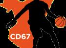 Section sportive – Lycée Couffignal : réunion d'information